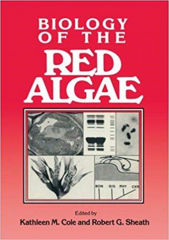 red algae